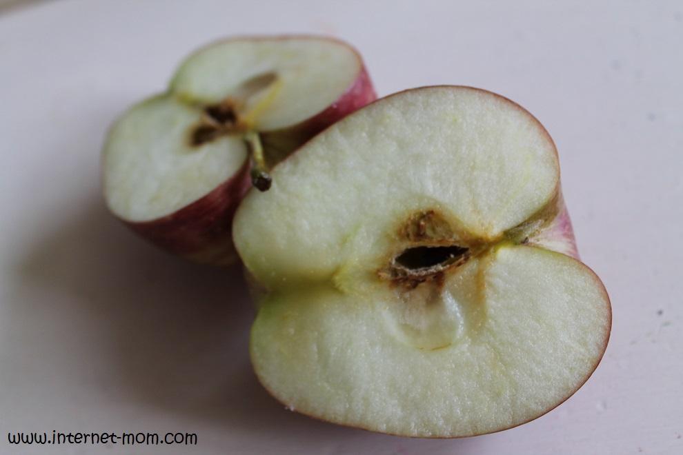 1661-apple-stamp-חותמת-תפוח