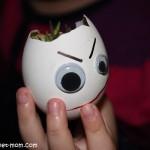 2319-egg-planter-עציץ-ביצה