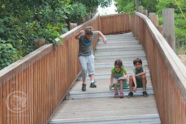 יום בגן החיות התנכי
