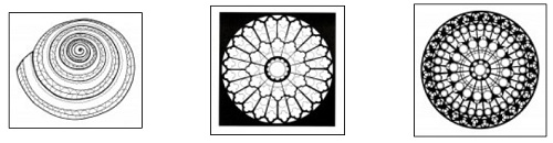 3422-mandala-coloring-pages-מנדלה-דפי-צביעה