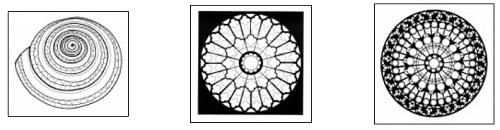 3422-mandala-coloring-pages-מנדלה-דפי-צביעה