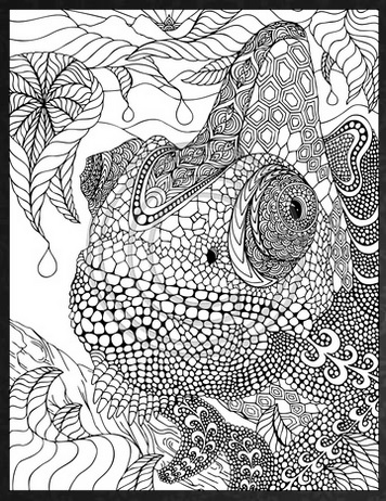 3419-adults-coloring-pages-דפי-צביעה-מבוגרים