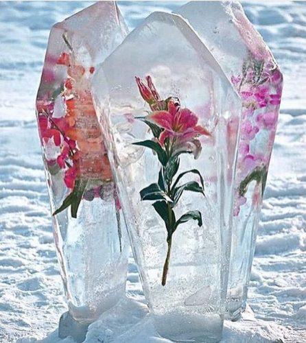 5056-center-piece-סידור-פרחים