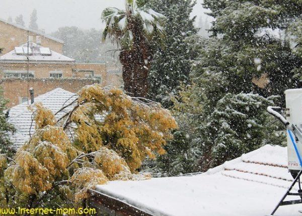 שלג… איזה כייף!
