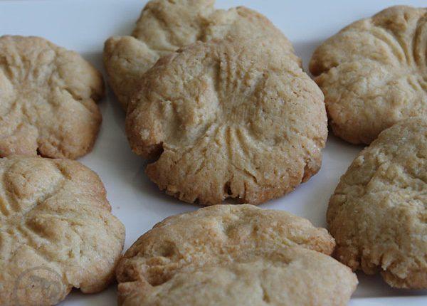 עוגיות מאובנים