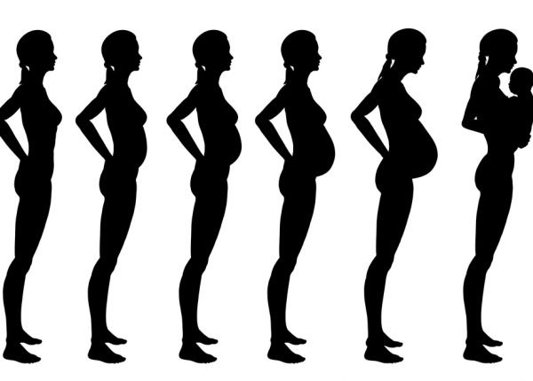 צילום: הריון ותינוק על ציר זמן
