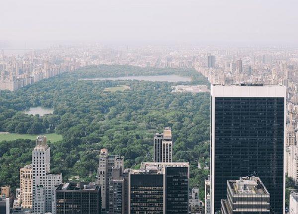 ניו יורק עם ילדים – סנטרל פארק